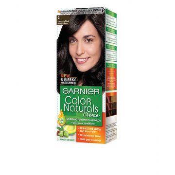 Garnier Color Naturals Luminous Black 2.0 - 0434